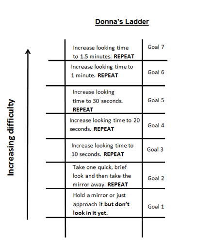 Donnas ladder